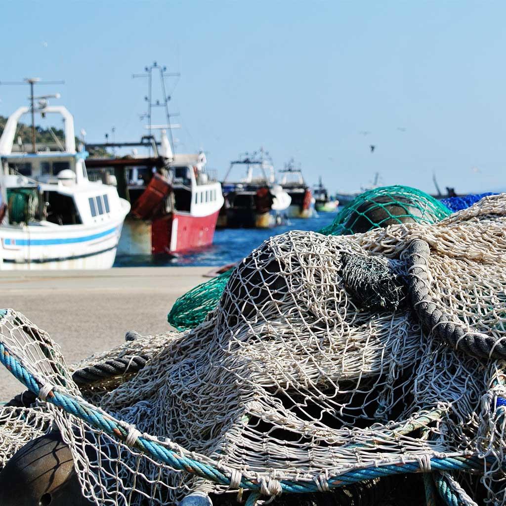 Intermares pesca comercial
